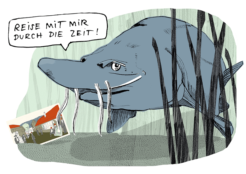 #10_Donaustrahl10_c_Schallaburg.png